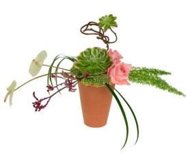Succulent Floral Design  - Leanne and David Kesler, Floral Design Institute, Inc., in Portland, Ore.