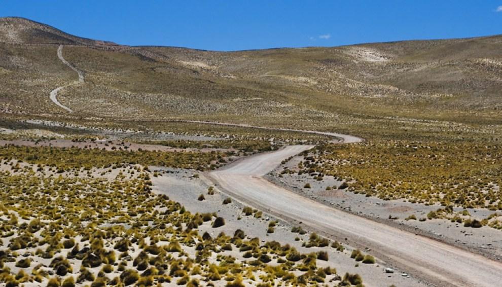 La estepa andina posee una condición extrema, debido a la mínima precipitación de lluvia y la gran altitud. Sólo predominan las hierbas bajas y una poca fauna local. Atacama, Chile. (Guillermo Morales)