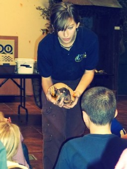 326/365 {2011} - Armadillo Learning