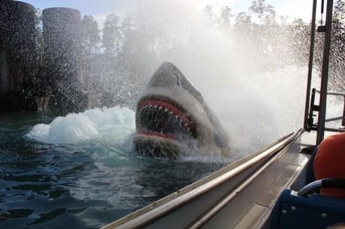 Jaws shark attack