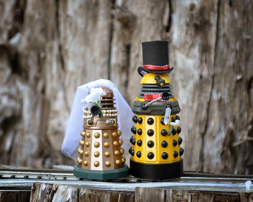Dalek love