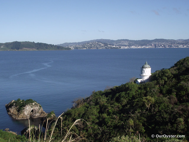 Photo of Wellington from Somes Island