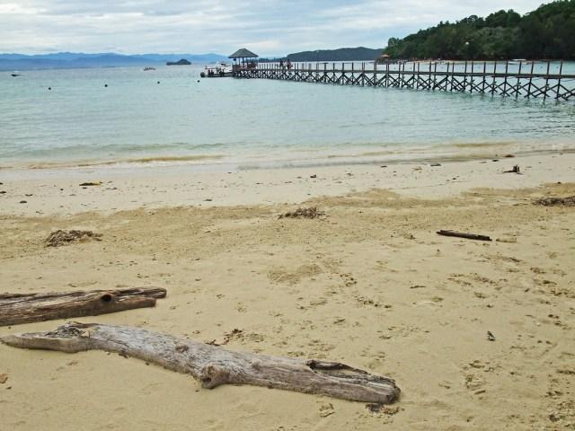 Pulau Gaya - Tunku Abdul Rahman Marine Park, Sabah, Malaysian Borneo DSCF9417