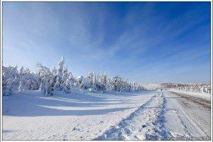 [阿拉斯加費爾班克斯 DAY5-1]北極圈(Arctic Circle)(上)、育空河(Yukon River)