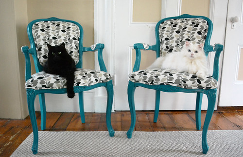 DIY Chair Makeover- The Cats Approve