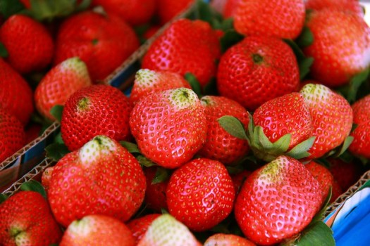 Freshly-picked strawberries from the fields of La Trinidad, Benguet