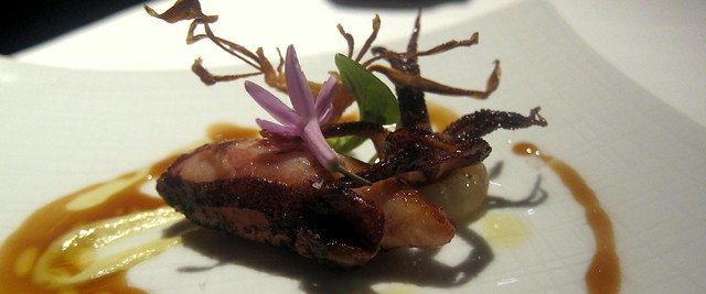 seared baby squid at saam