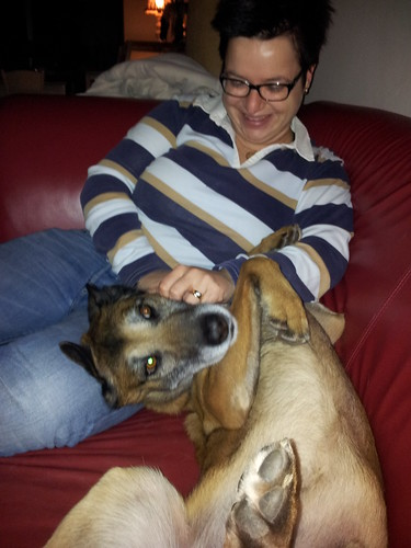 Hoezo knuffelhond? Hij heeft het zo zwaar...