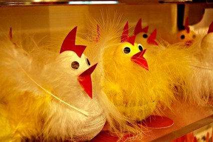 Fuzzy toy chicks