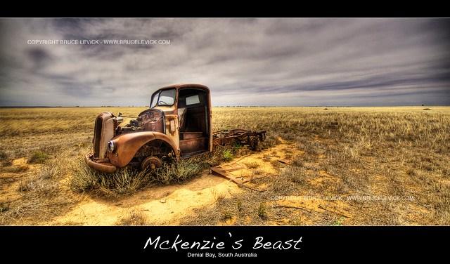 Mckenzie's Beast