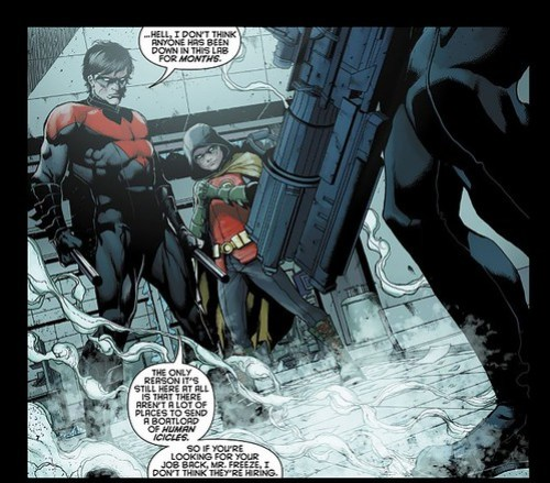 Robin and Nightwing