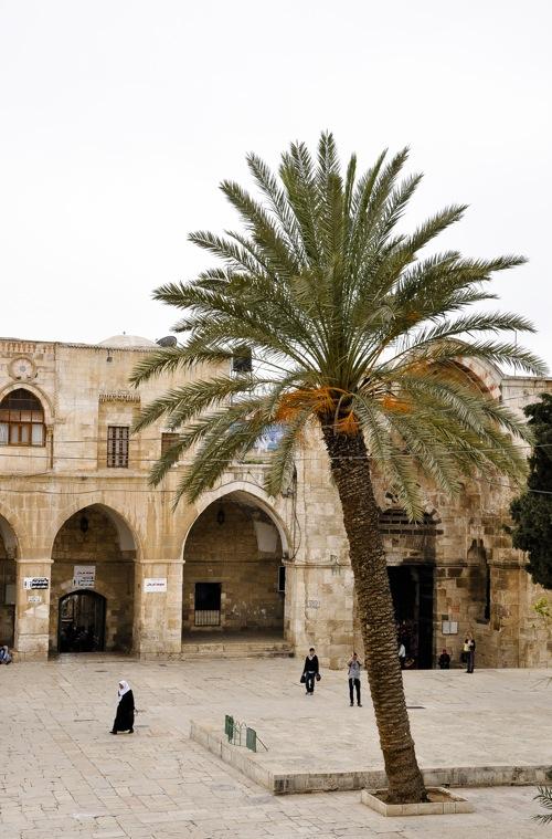Ierusalim (1 of 1)-32