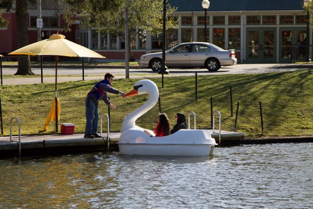 Swan Boats