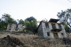 Βίνιανη