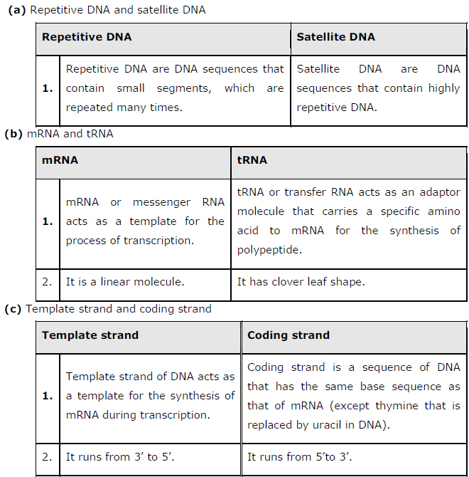 NCERT Solutions Class 12th Biology: Chapter 6   Molecular Basis of Inheritance Image by AglaSem