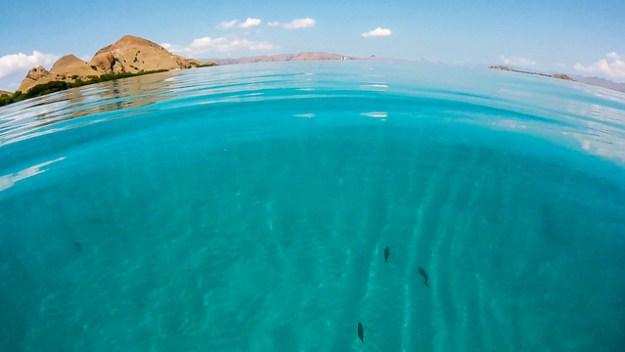 Clear water. Komodo