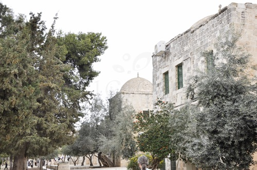 Ierusalim (1 of 1)-33