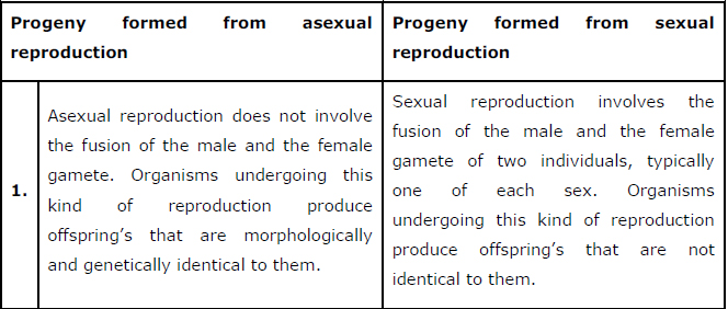 NCERT Solutions Class 12th Biology: Chapter 1   Reproduction in Organisms
