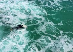 Surfing, Manhattan Beach, CA