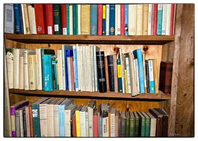 Randy's Bookshelves Number 1