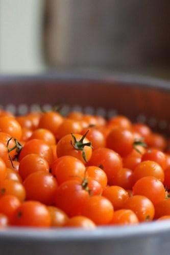 Sungold Tomatoes Il Corvo Pasta