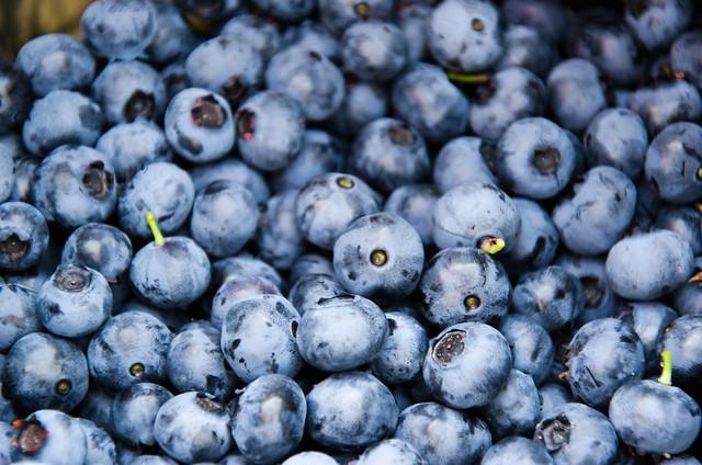 Reward for work: Blueberries
