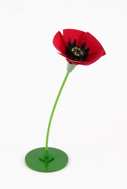 Poppy Flower - Unedited version