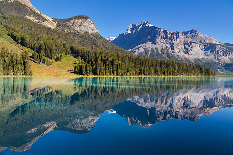 4k Central Park In The Fall Wallpaper Yoho National Park British Columbia Travel And Adventure