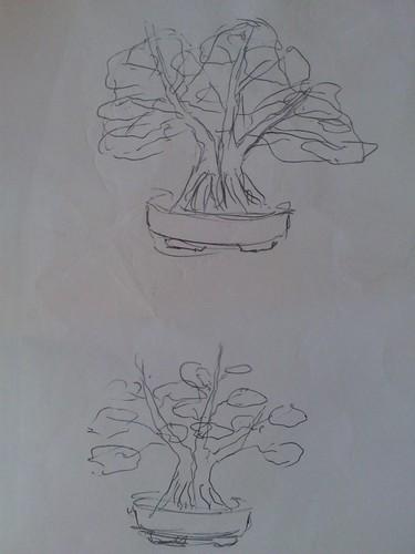 wiring my bonsai