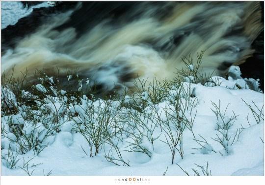 Het bruine water van de Hoëgne en de witte sneeuw die gekleurd is door de invallende schemer