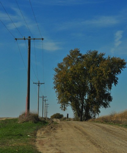303: Country Road