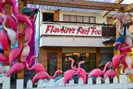 Rumpus Room Flamingos (RIP)