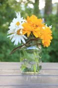 Similkameen Flowers