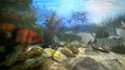 Gauthier_Underwater_Colored_withMB_WireframePassStill__00215