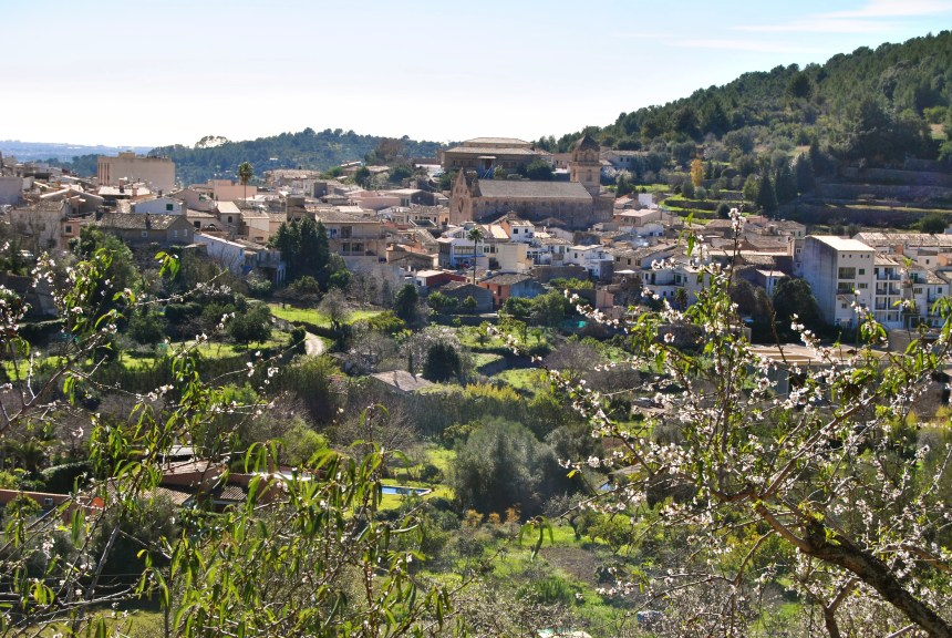 MallorcaFruits y Bunyola