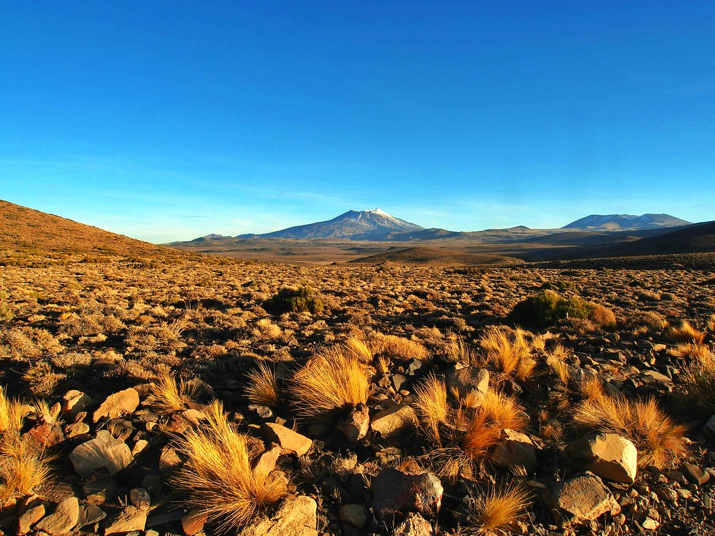 Views back to El Tromen