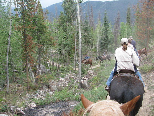 Grand Lake Horseback Riding