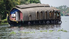 Backwaters photo