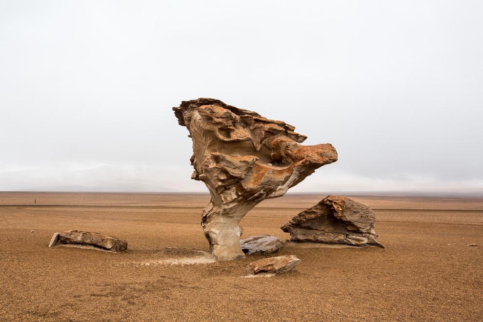 El Árbol de Piedra que fue declarado monumento natural, es una formación de roca volcánica producida por la erosión del viento. Tiene una altura de 5 metros y su apariencia particular es el elemento que le da interés turístico. (Tetsu Espósito)