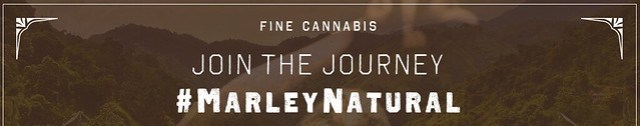 JOINT THE MARLEY JOURNEY