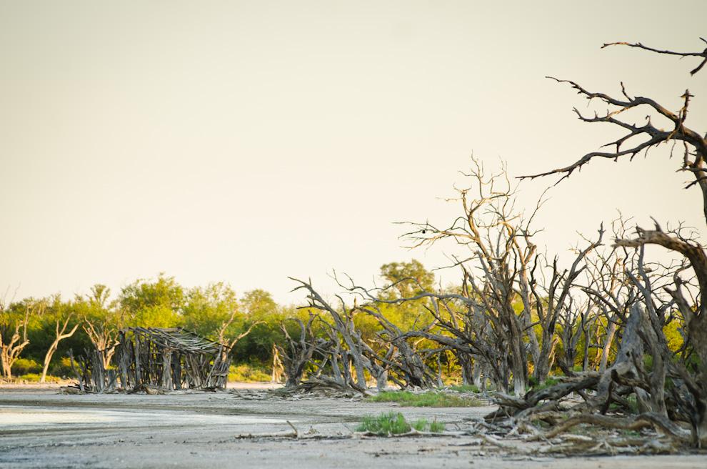En la parte trasera del campamento Laguna Capitán, existe una casita construida con troncos de árboles secos, se comenta que dicha casa se usó para la filmación de una película paraguaya. (Elton Núñez)