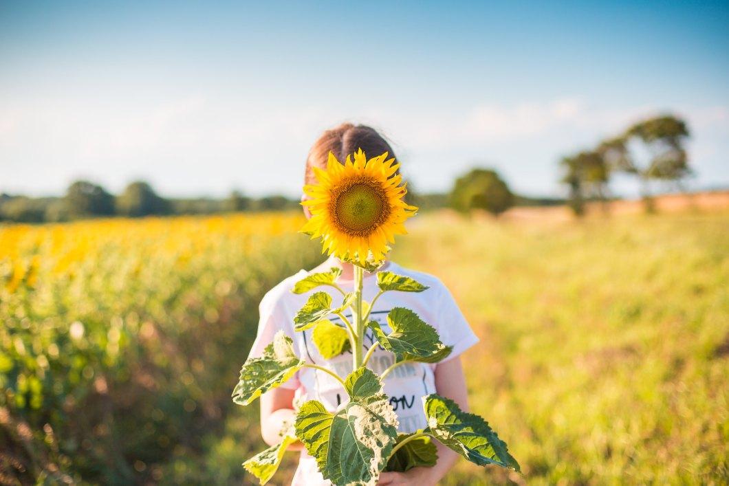 Imagen gratis de una chica sujetando un girasol
