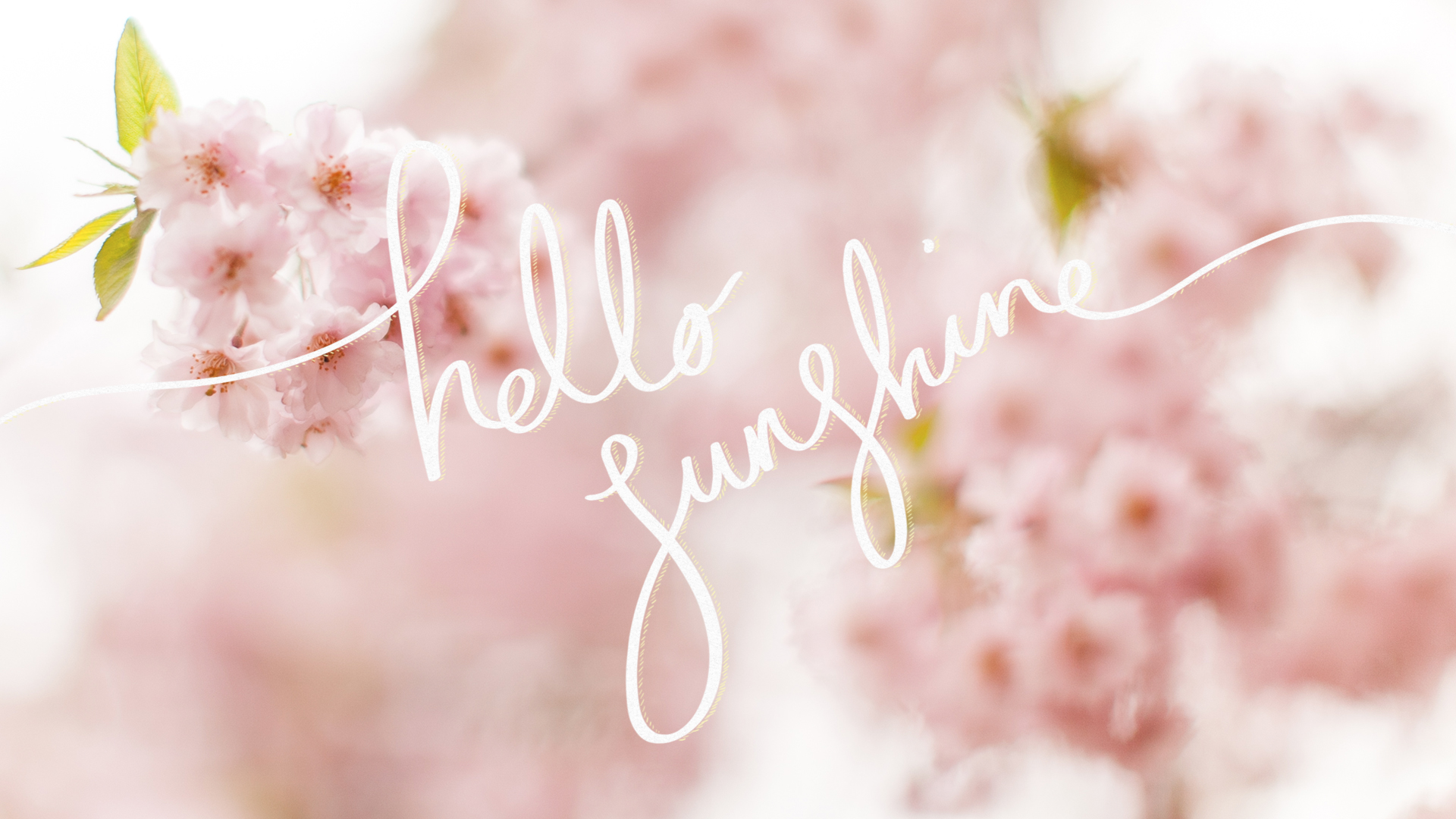 Hustle Quotes Wallpaper Hello Sunshine A Free Cherry Blossom Desktop Wallpaper