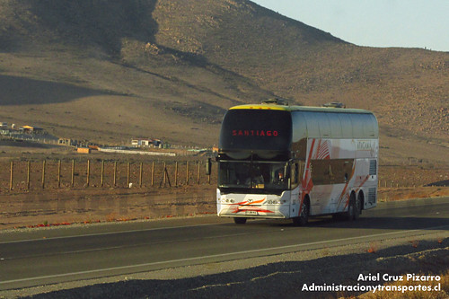 Atacama Vip - Atacama - Youngman Skyliner (FYBW62)