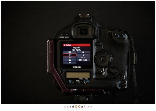 Witbalans mogelijkheden op een camera