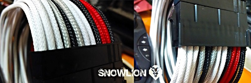snowlion56
