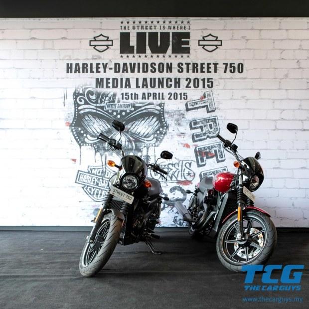 2015 Harley-Davidson Street 750 (11)