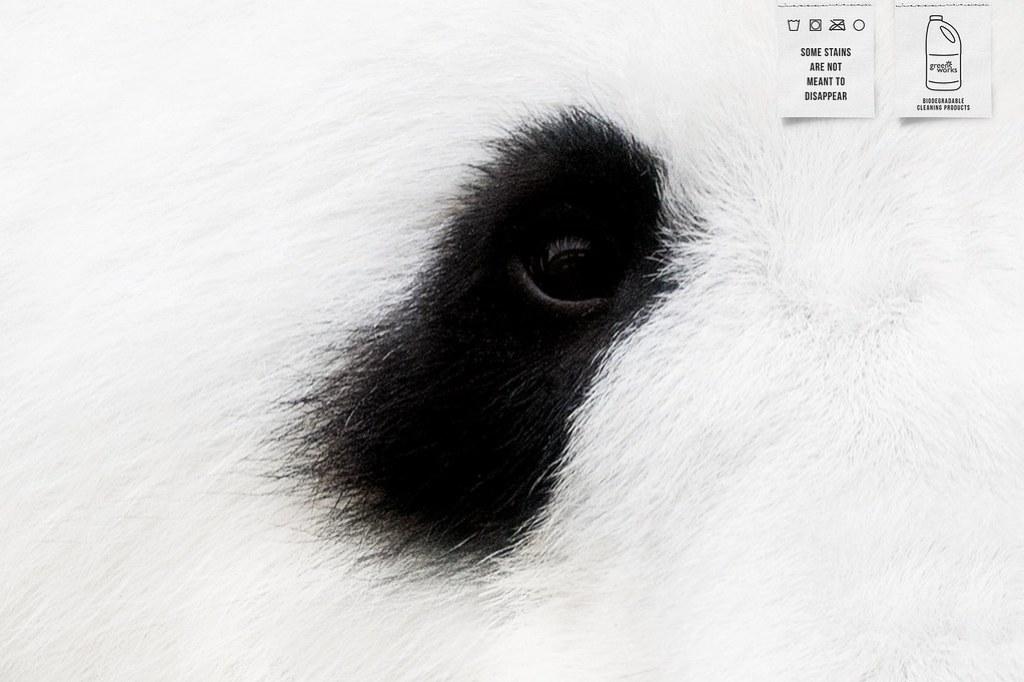 Greenworks - Panda