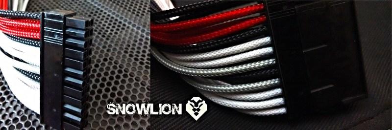 snowlion54