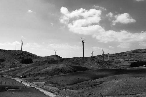 manawatu turbine farm